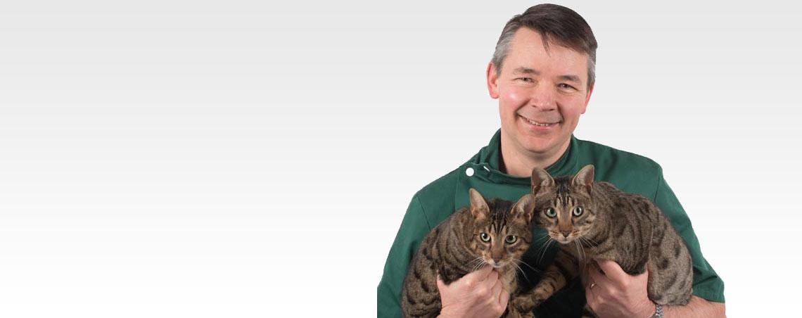 Feline Services